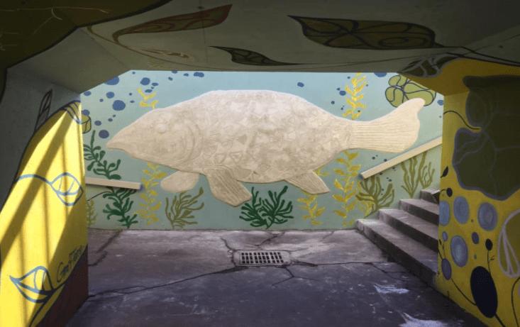 Graff'Terre, quand le street-art habille les rues de Toulouse Métropole